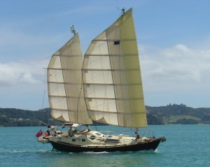 David Tyler's Tystie, with its wing sail ketch rig