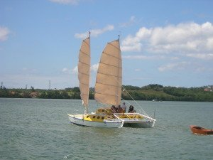 A Wharram designed catamaran with soft wing sails (with junk rig properties) designed by Bertrand Fercot