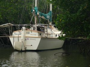 NIS31 Talisman at Great Keppel Island